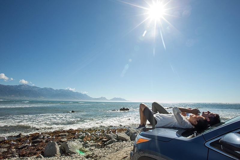 A roadside rest to soak up the Kaikoura sunshine. © Sara Orme