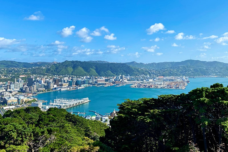 View of Wellington city from Mt Victoria